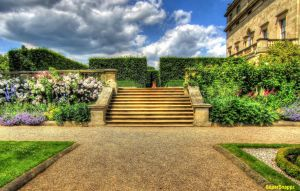 Flowered steps by supersnappz16