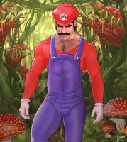 Homo Mario in Marioland by softendo