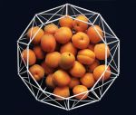Geometric still life with apricots_2 by VinaApsara