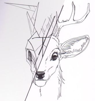 15 - Dear deer by Phoeline