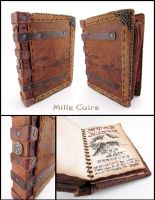 My old personnal Grimoire by MilleCuirs