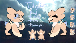Tulipan ref sheet OUTDATED by Magical1342aj