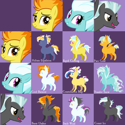 Wonderbolts NextGen Grid Adopts (OPEN) by LillianInk