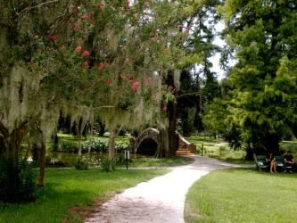 New Orleans City Park 01 by nevertakemystock