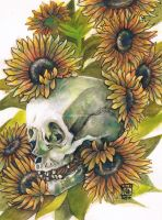 sunflower skull by sillynumber