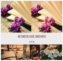 Between Love n hate - Photoshop Action by friabrisa