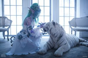 Tyrande and Ash'Alah IV by Narga-Lifestream