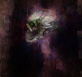 ~SKULL 5~ by SalvidorMonkey