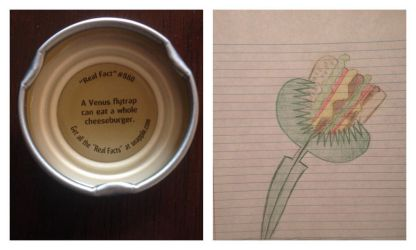 That Snapple Fact by V-pal97