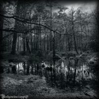 La mare aux fees IV by CountessBloody