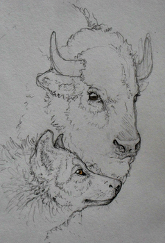 wolf and bison by Misgin