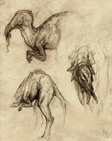 Creature concepts, TI by aaronsimscompany