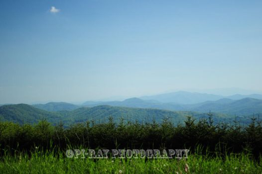 Blue Ridge Mountains by SammanthaAus