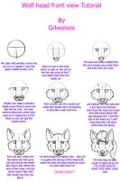 wolf head front view tutorial by Grlwolves