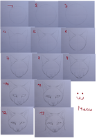 How you draw a cat head (front) by Drachenseele