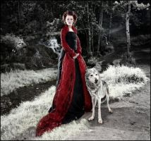 The lady and the wolf. by DeanMcClelland