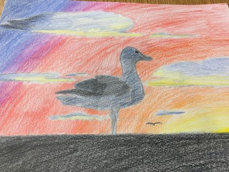 Seagull by RazzEmber