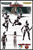 Wych Dark eldar for daz3d   poserpro by jibicoco