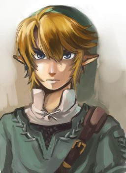 TP Link by rdanys