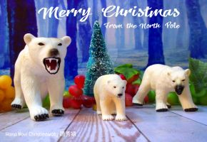 Merry Christmas from The North Pole by hananovie
