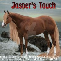 Jasper's Touch by MagsHemmings132296