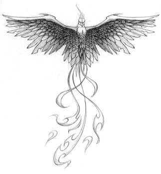 Pheonix Tattoo Design by PatrickBrown