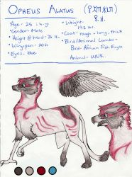 Opheus Ref 2015 by Gryphonwolf6274