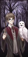 HP - Harry and Hedwig by Van-Reille