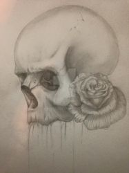 skull with rose.. by Kagedej