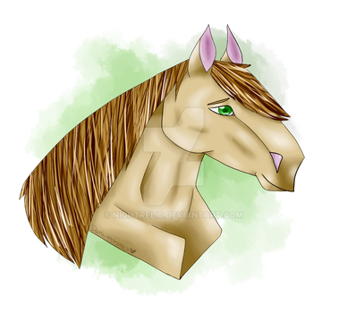 Eyyyy Lookit The Beautiful Horsey by nightrelic