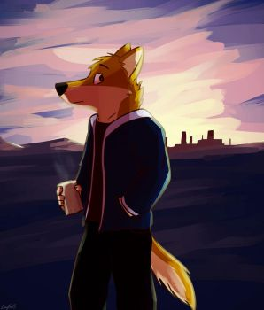Sunsets by LeeyFox