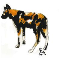 African Painted Dog by ZellaL
