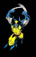 wolverine full color by ddcobbs