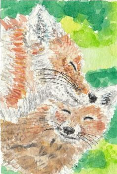 Fox  family  watercolor ACEO original painting by tulipteardrops