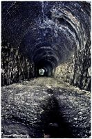 the tunnel by james661