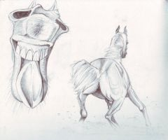 Horse1 by FATRATKING