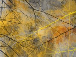 Branches 5 by irbis22