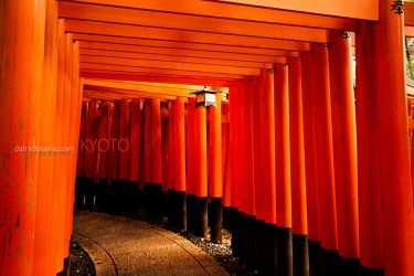 Kyoto Shrines by dafni