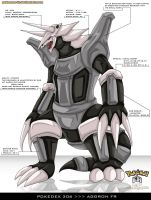 Pokedex 306 - Aggron FR