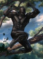 Jumping T'Challa By Spiderguile - colors by Biram-Ba