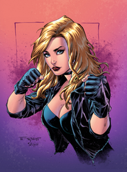 Black Canary Colors by aethibert