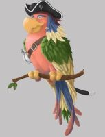 Pirate parrot by Warlogic