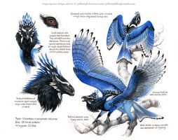 Custom Aequis: Steller's Jay by pallanoph