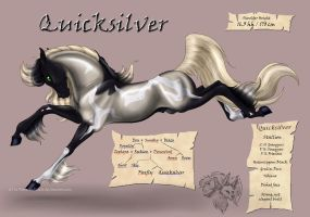 Quicksilver - Son of Reckless by FlareAndIcicle