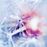 Happy New 2010 Year by onixa