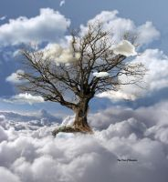 The Tree of Heaven by egypt04