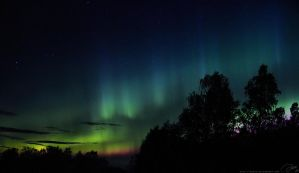 Northern Lights by DaXXe