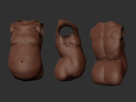 Male chubby bust study by Ahmed-Taher