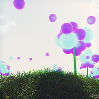 Balloon Fields by KMSawad