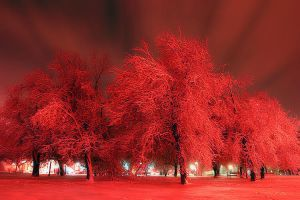Illusions Of Red by AstralWind